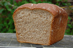 Sourdough Bread... (Johnny Frisco) Tags: crust dough tasty delicious wholemeal loaf flour yeast sour sourdough crumb strongwhiteflour