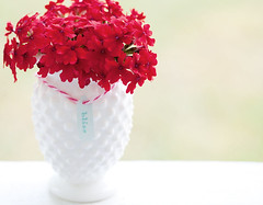 Bliss (jljjld) Tags: flowers red antique vase bliss twine redandwhite hobnail milkglass