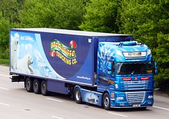 DAF XF 12-KY-897 McAuliffe Trucking (gylesnikki) Tags: blue ireland irish art truck titanic artic airbrush paintjob rmstitanic mcauliffetrucking