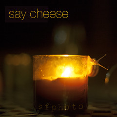 say cheese (s.f.p.) Tags: cheese night fire noche candle snail lindo fuego vela say caracol suicida