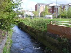 The Bourn Brook, University of Birmingham (sludgegulper) Tags: birmingham university