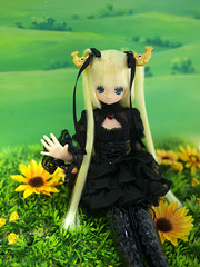 Shachihokoron on the Field (Pureneemomo) Tags: doll nagoya shachihoko koron azone pureneemo excute shachihokoron
