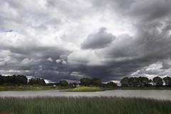 iona park storm (keith[martin]working) Tags: nature water clouds rural reeds olympus m43 em5 lumixg14f25 lumix14mmf25 olympusomd
