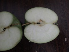 IMG_20130609_003315 (Ahmed AlHallak) Tags: 2 green apple stem with seeds half connected sliced stalk تفاح أخضر قرن بذور مقسوم بالنصف
