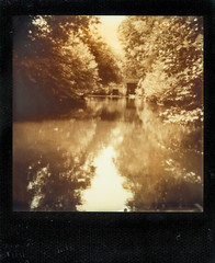Magolan (TTkc :)) Tags: film water analog silver project polaroid shade 600 parc cl argentique impossible analogic px 636 blanquefort