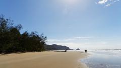20130725-03-Tidal creek at Mulligan Bay.jpg (Roger T Wong) Tags: ocean sea water trek island nationalpark sand walk australia hike queensland np bushwalk tramp canonef24105mmf4lisusm hinchinbrookisland canon24105 canoneos6d