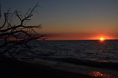 Sunrise, Hillman Marsh, South Beach ~ Explored ~ (shireye) Tags: lake ontario tree water sunrise reflections nikon lakeerie silhouettes 70200 southbeach hillmanmarsh explored chathamkent d7000