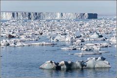 Floating Ice from the Brasvellbreen Glacier (Smudge 9000) Tags: sea summer ice glacier svalbard arctic pack 2013 svalbardandjanmayen brasvellbreen