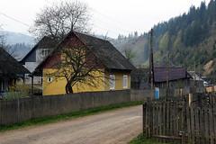 Carpathian Mountains (Gjabu) Tags: mountains landscape village ukraine carpathian   chornohora    a