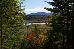 Adirondack National Park (5.9 Million Views www.DelensMode.com) Tags: park new york mountain lake ny reflection tree fall nature water up pine foot state hill foliage national rolling adirondack