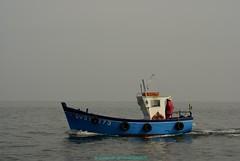 Bateau de Pche du Guilvinec (Gwenol de KERMENGUY) Tags: de marin artiste gwenole kermenguy