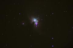 M42 (utorontotelescope) Tags: toronto nebula orion astronomy starformation Astrometrydotnet:status=solved Astrometrydotnet:id=nova222482