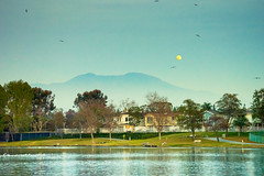 An Evening at Woodbridge Lake, Irvine (Kartik J) Tags: california blue trees sky sun moon lake mountains water birds clouds landscape evening sony hills moonlight alpha a7 irvine woodbridge sonyalpha kartikjayaraman ilce7 fe2870 fe2870mm