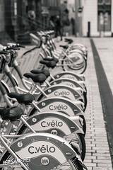 cvelo (Pep Sanchez) Tags: canon frana bicicleta agost gec ciutat estiu collectiva massscentralfrancs