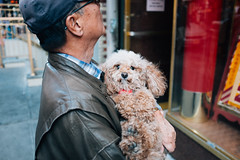 DSCF3091Edit (jayufoon) Tags: nyc newyorkcity portrait dog newyork cute dogs nature brooklyn subway chinatown cityscape manhattan streetphotography queens fujifilm lightroom x100 shootfilm x100s x100t