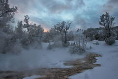 Freeze Frame (dbushue) Tags: trees winter sunset snow nature clouds landscape nikon scenery terraces january steam yellowstonenationalpark wyoming thermal hotsprings ynp mammothhotsprings 2014 upperterrace dailynaturetnc14 dailynaturetnc15