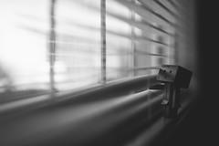 DSC_3516 (TheSonOfMuluh) Tags: light white black window photography virginia nikon downtown action bokeh 85mm lynchburg figure bo 18d danbo danboard