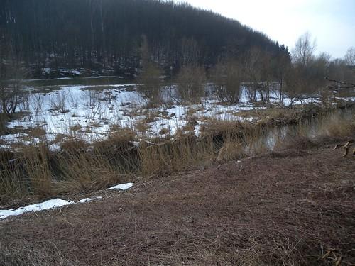 20150219_98_Wienerwaldsee (Large)