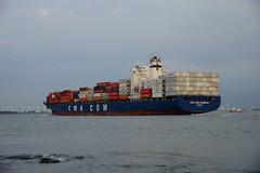 CMA CGM Sambhar (DST_6556) (larry_antwerp) Tags: netherlands ship nederland vessel container schelde  schip  rilland  cmacgm      cmacgmsambhar       9508304