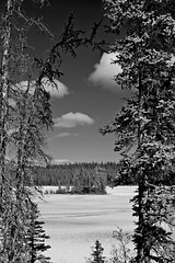 The Little Island - B&W (MIKOFOX  Thanks for Visiting!) Tags: lake ice clouds landscape island spring yukon april spruce snowmelt borealforest xt1 fujifilmxt1 xf18135mmf3556rlmoiswr screwtheautotagbot