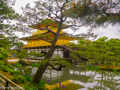 Kyoto - mai 2016 (plb06) Tags: japan kyoto asie japon continentsetpays