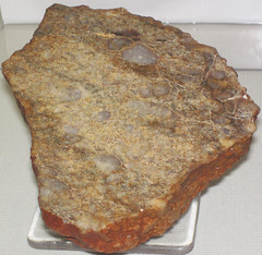 Quartz-pebble metaconglomerate (Jack Hills Quartzite, Archean, 2.65 to 3.05 Ga; Jack Hills, Western Australia) 1 (James St. John) Tags: jack australia hills formation pebble western quartz quartzite conglomerate precambrian archean metaconglomerate neoarchean mesoarchean