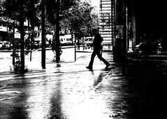 In the rain's light (pascalcolin1) Tags: blackandwhite reflection rain noiretblanc pluie reflets streetview paris13 photoderue urbanarte photopascalcolin