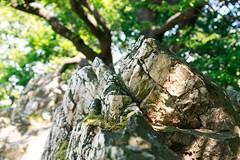 1605 Zmisko (matusm) Tags: spring geocaching hiking jar slovensko slovakia 2016 malkarpaty adushka zochovachata zmisko zmisko