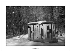 PhM - Cri glac (Philippe Em) Tags: wood snow tags neige bois chomage chomer