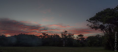 Beautiful sunset (Chris Smearing) Tags: newzealand southisland greatwalk abeltasmannationalpark