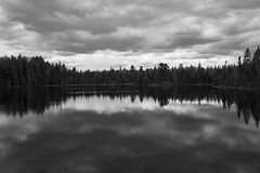 algonquin provincial park (Daniel Mortimer) Tags: park trees blackandwhite cloud white lake canada black reflection tree water clouds canon reflections outside outdoors sigma wideangle algonquin provincial canon7dmarkii