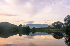 A nice early start to the day D75_1492.jpg (Mobile Lynn) Tags: water river landscape morninglight hill australia queensland daintree coutryside landscapephotography outdoorphotography