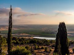 Dawn (ozzios) Tags: trees nature sunrise landscape israel parkcanada