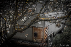 Nature and rust (ericbaygon) Tags: tree nature car vw volkswagen nikon rust rusty pickup voiture arbre combi rouille utilitaire nikonpassion d300s
