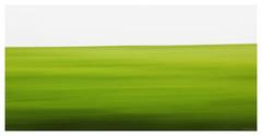 """""""Ocean of green"""" (B.Graulus) Tags: longexposure canon landscape photography fotografie belgium belgique belgië fields tamron belgica landschap flanders vlaanderen vlaamsbrabant huldenberg canon600d"""