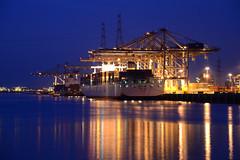 DP World (larry_antwerp) Tags: port ship belgium belgi vessel terminal container antwerp schelde  antwerpen  schip cosco      cmacgm dpworld                    deurganck derbyd    coscoitaly        9278117 9516454
