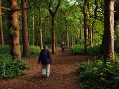 Dawn Chorus walk     M6251146sm (Preselector) Tags: suttoncoldfield suttonpark bioblitz