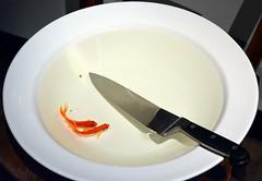 Hobart (graeme37) Tags: fish goldfish australia mona hobart2016