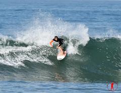 DSC_0112 (Ron Z Photography) Tags: surf surfer huntington surfing huntingtonbeach hb surfin surfsup huntingtonbeachpier surfcity surfergirl surfergirls surfcityusa hbpier ronzphotography