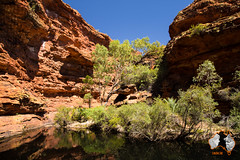 20160331-2ADU-036 Kings Canyon