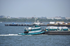 Picture Taken From The Staten Island Ferry Of The Tugboat Crystal Cutler. Photo Taken Monday June 27, 2016 (ses7) Tags: ferry island staten viewtugboat