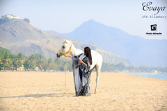 Untitled (Monia Allouche) Tags: morning sea summer horse woman sun seascape beach nature girl lady landscape cheval amazing model dubai uae sunny paysage modelling whitehorse khorfakkan