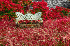 Royal sofa in nature (bjrn_c) Tags: old trees red wallpaper sun tree texture nature beautiful grass relax landscape leaf spring pattern natural outdoor furniture antique background decoration picture meadow sunny nobody retro sofa fabric decor luxury seamless upholstery