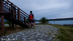 (yomoneko1) Tags: leica bicycle port felt agapanthus