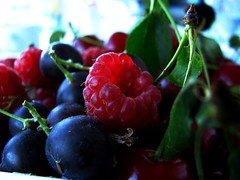 Early summer delicacies . / Nyr eleji finomsgok. (Marinyu..) Tags: food fruit berry fresh explore raspberry refreshing delicacies summerfruit mlna gymlcs josta rubusidaeus 199explore ribesnidrigolaria