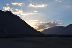 sunset (sootix) Tags: sand camelride bactriancamel