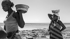 Let's go home, we need to cook this... (Srgio Miranda) Tags: africa street travel people urban beach photography photo streetphotography fujifilm mozambique moz moambique pemba travelphotography x100 fujix sergiomiranda x100t fujix100t