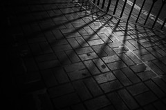 Shadow (silvell/) Tags: cosina voigtlander ultron vmeclosefocusadapter ilce7m2 7 ultron35mmf17vintagelineaspherical ultron1735vm