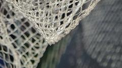 Bird Netting (Theen ...) Tags: goblesonpetandgrainsupplies adelaide billowing bird bokeh crochet lumix netting petsupplies shallowdof swathe theen wind