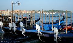 The gondolas of Venice II (K. Haagestad) Tags: venice italy boats italia venezia gondolas canalgrande
